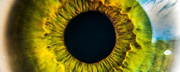 human eye, biology, cells, dna